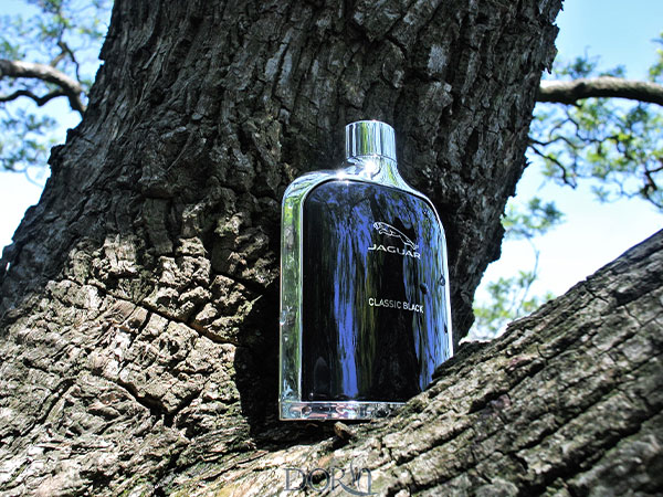 عطر ادکلن جگوار کلاسیک بلک مشکی - Jaguar Classic Black