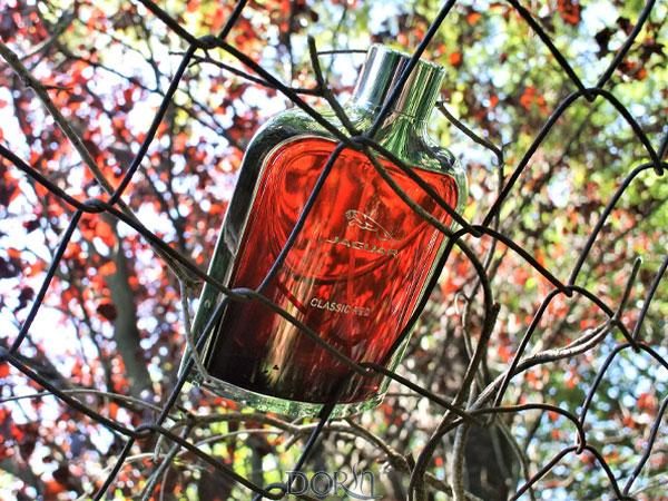 عطر ادکلن جگوار کلاسیک رد - جگوار کلاسیک قرمز - Jaguar Classic Red